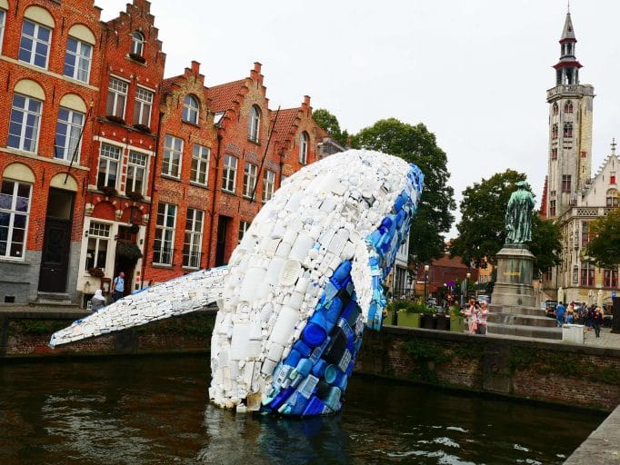 bruges whale image by Ethiqana a shop specialising in eco friendly products, earth friendly products and sustainable products.